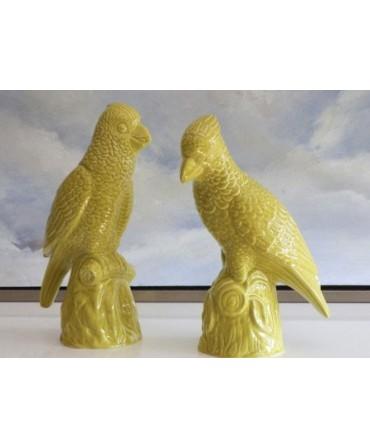 Papagaio de Cerâmica